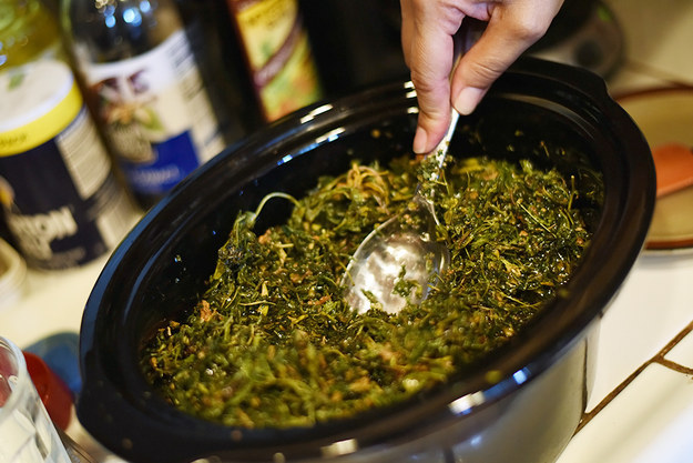 Add the cannabis to oil and stir until all the inflorescences are well covered